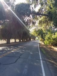 Putah Creek Road, Winters