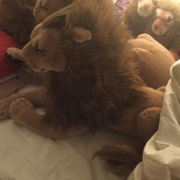 Zachte Peace Bor leeuw