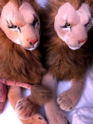 De negende Rob Nanninga Leeuw van de meerling, met Peace Bor Lion