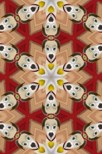 Rob kaleidoscoopt zijn virtuele hond