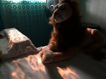Rob Magician Lion, in de vuurgloed van de California Wildfires
