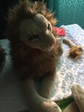 Rob Robust Lion in de vuurgloed van de California wildfires