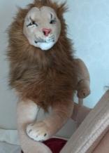 Lift-Off, Rob Magician Lion