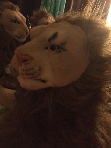 Je maakt me aan het blozen (Rob Magician Lion)