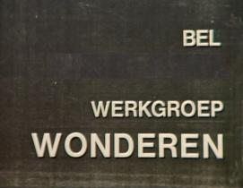 BEL WERKGROEP WONDEREN! (=alias Rob Nanninga)