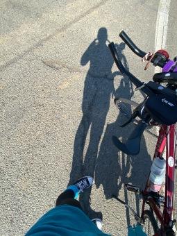 Constantia en fiets