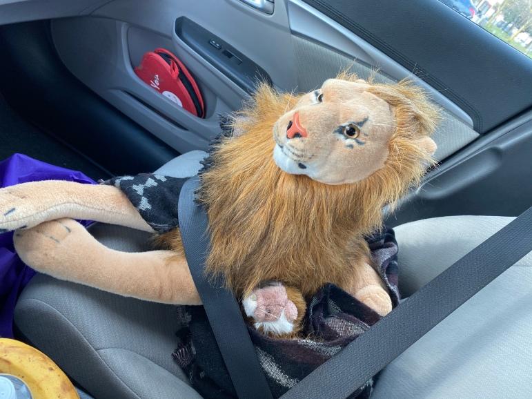Hungry Rob Lion en Whiskers-metgezel naar Rohnert Park